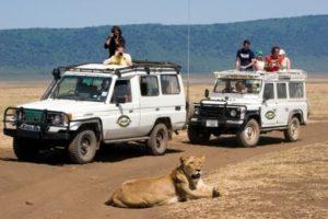 Look Inside Zara Tours Safari Permanent Tents